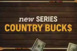 Country Bucks Teaser